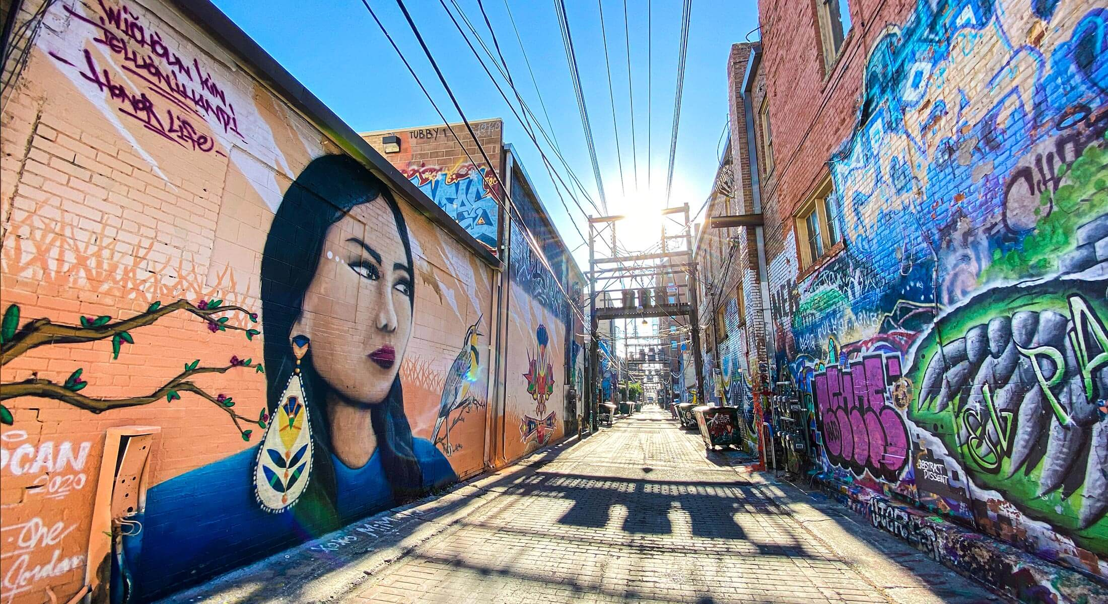 Murals in Art Alley Downtown Rapid City