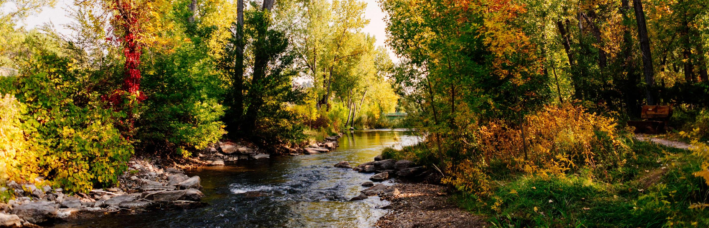 Fall colors at Founders Park in Rapid City