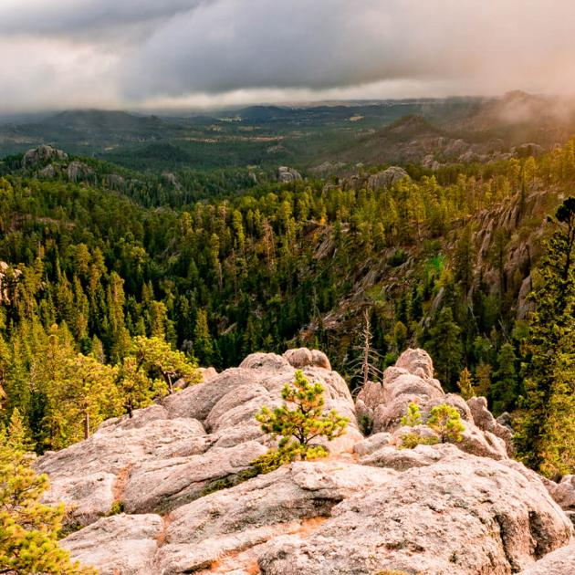 Sunset In the Black Hills National Forest