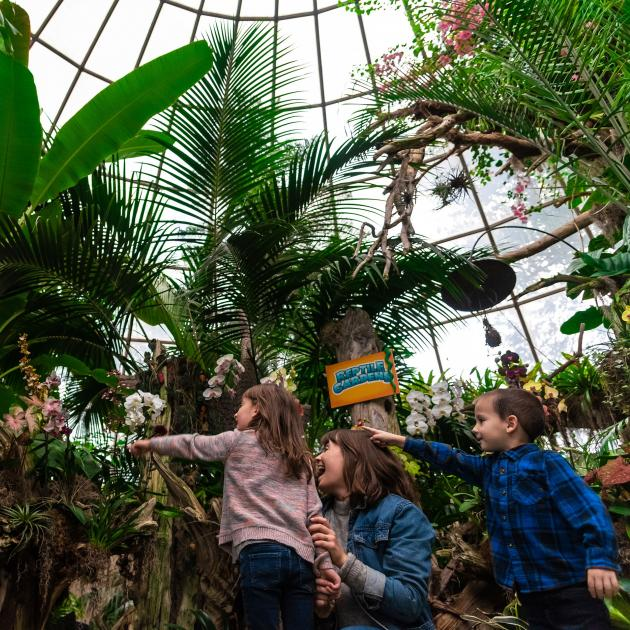 Family Exploring the Sky Dome At Reptile Gardens