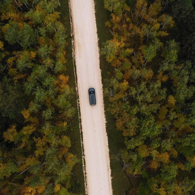 Car cruising in the Black Hills National Forest