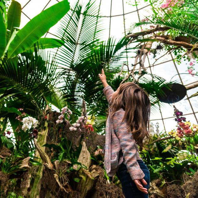 Girl exploring the Sky Dome at Reptile Gardens