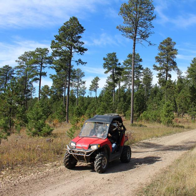 ATVing on the trails in the Black Hills National Forest