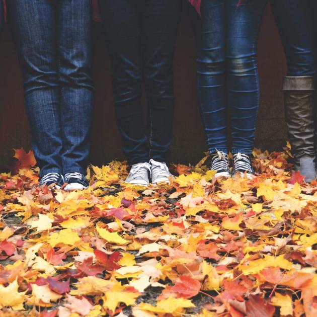 People standing on fall leaves